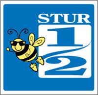 Sturminster Half Logo